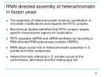 rnai directed assembly of heterochromatin in fission yeast
