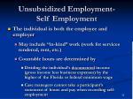 unsubsidized employment self employment