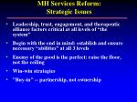 mh services reform strategic issues55