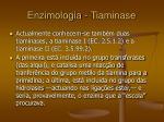 enzimologia tiaminase33
