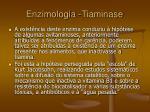 enzimologia tiaminase34