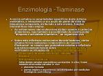 enzimologia tiaminase35
