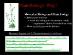 plant biology why