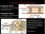 uptake of soil solution