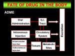fate of drug in the body