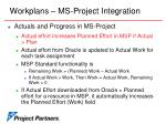 workplans ms project integration21