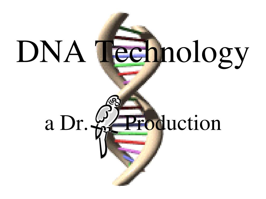 dna technology a dr production l.