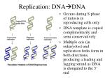 replication dna dna