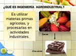 qu es ingenier a agroindustrial22