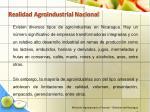 realidad agroindustrial nacional19