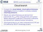 cloud branch