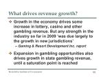 what drives revenue growth