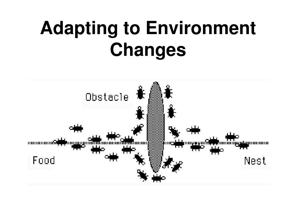Adapting to Environment Changes