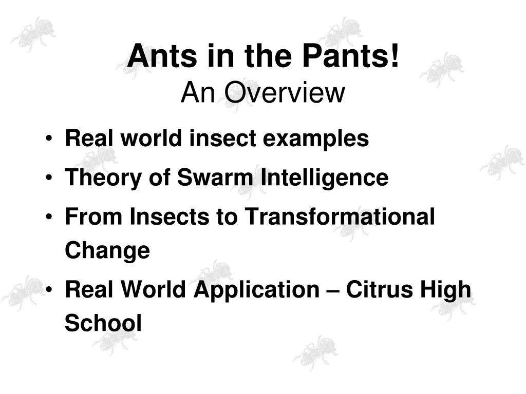 Ants in the Pants!