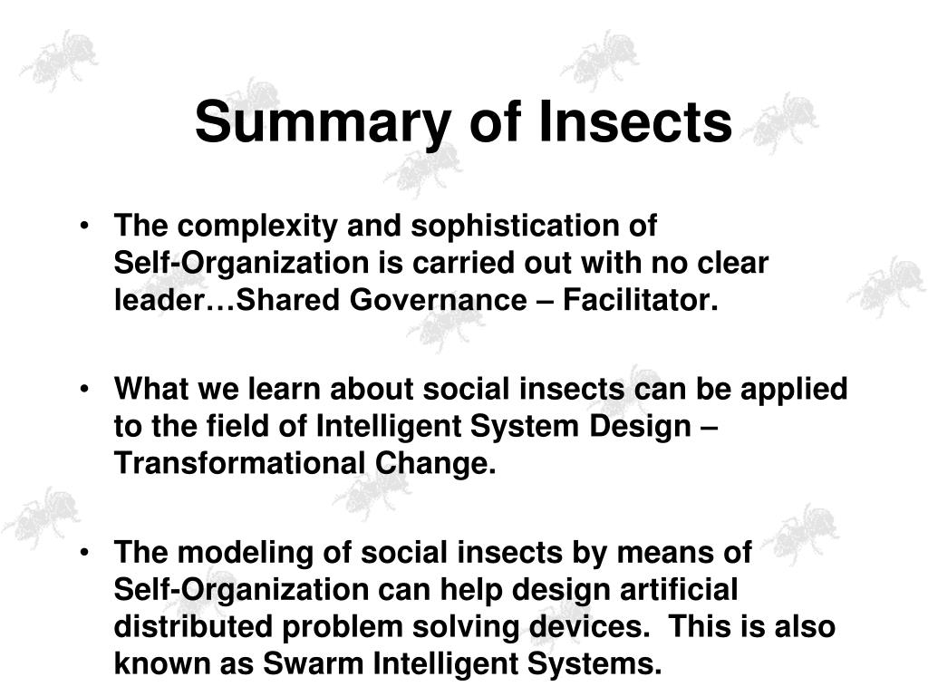 Summary of Insects