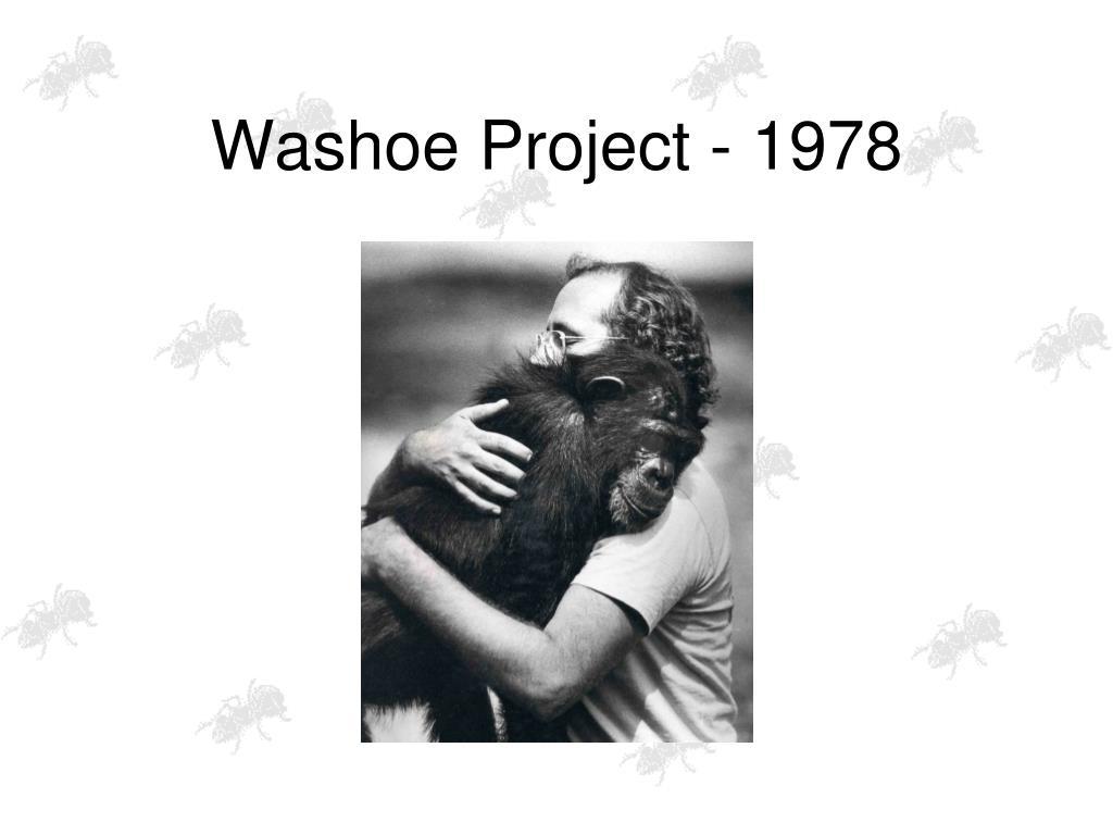 Washoe Project - 1978