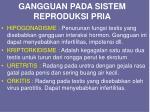 gangguan pada sistem reproduksi pria