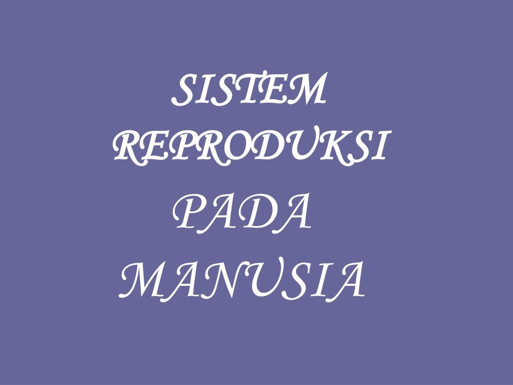 sistem reproduksi l.