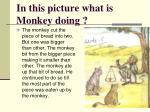 in this picture what is monkey doing