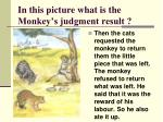 in this picture what is the monkey s judgment result