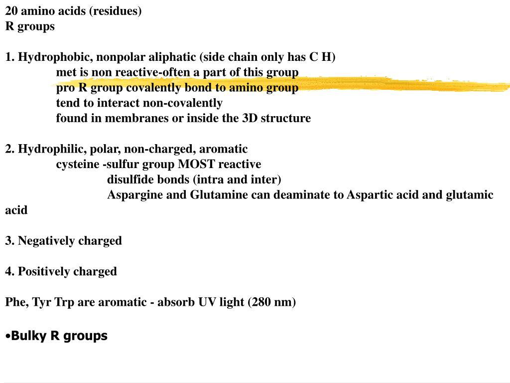 20 amino acids (residues)