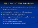 what are iso 9000 principles
