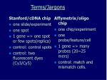 terms jargons