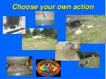 choose your own action