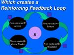 which creates a reinforcing feedback loop