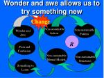 wonder and awe allows us to try something new