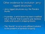 other evidence for evolution jerry rigged structures