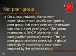 net peer group