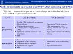 additional services to be provided under undp unep partnership cc dare
