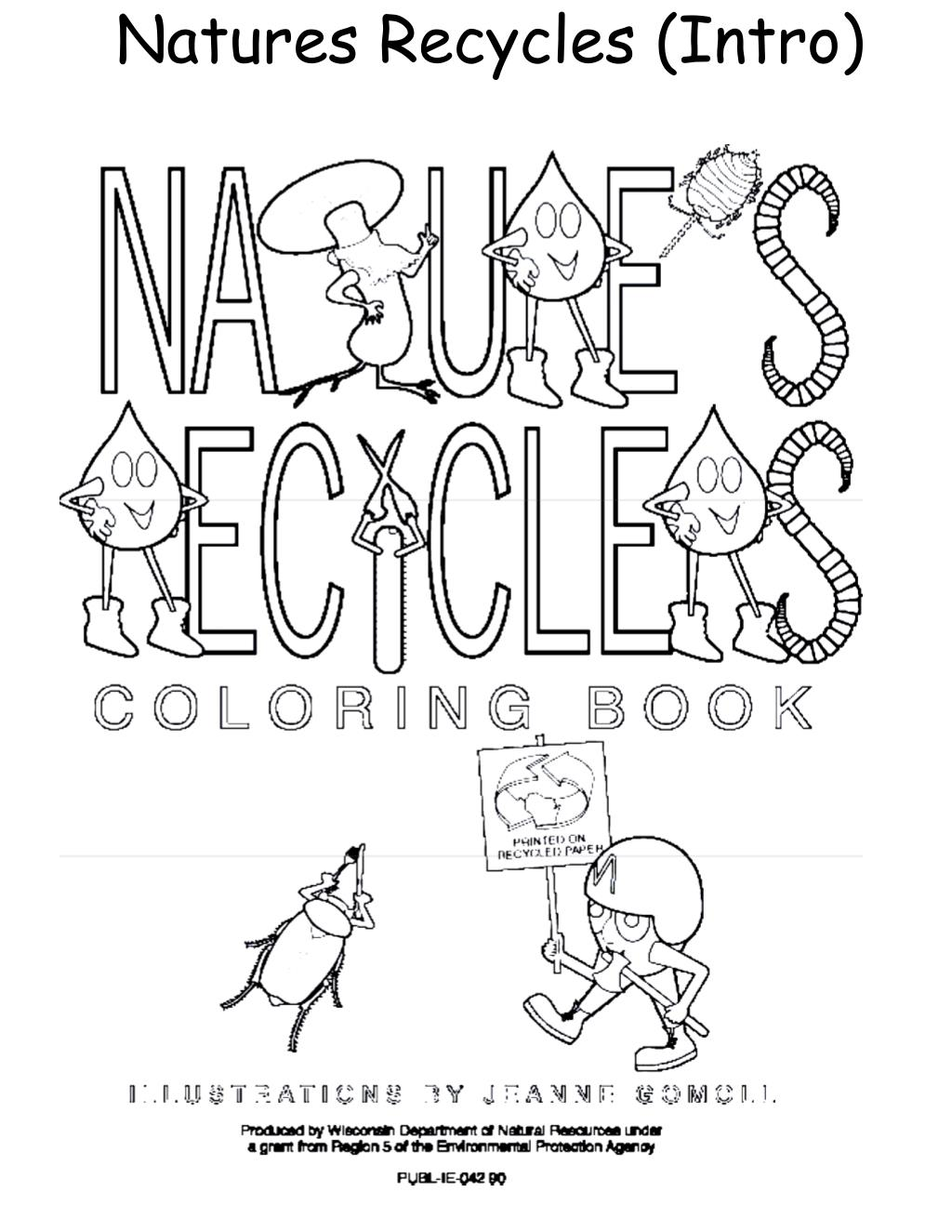 Natures Recycles (Intro)