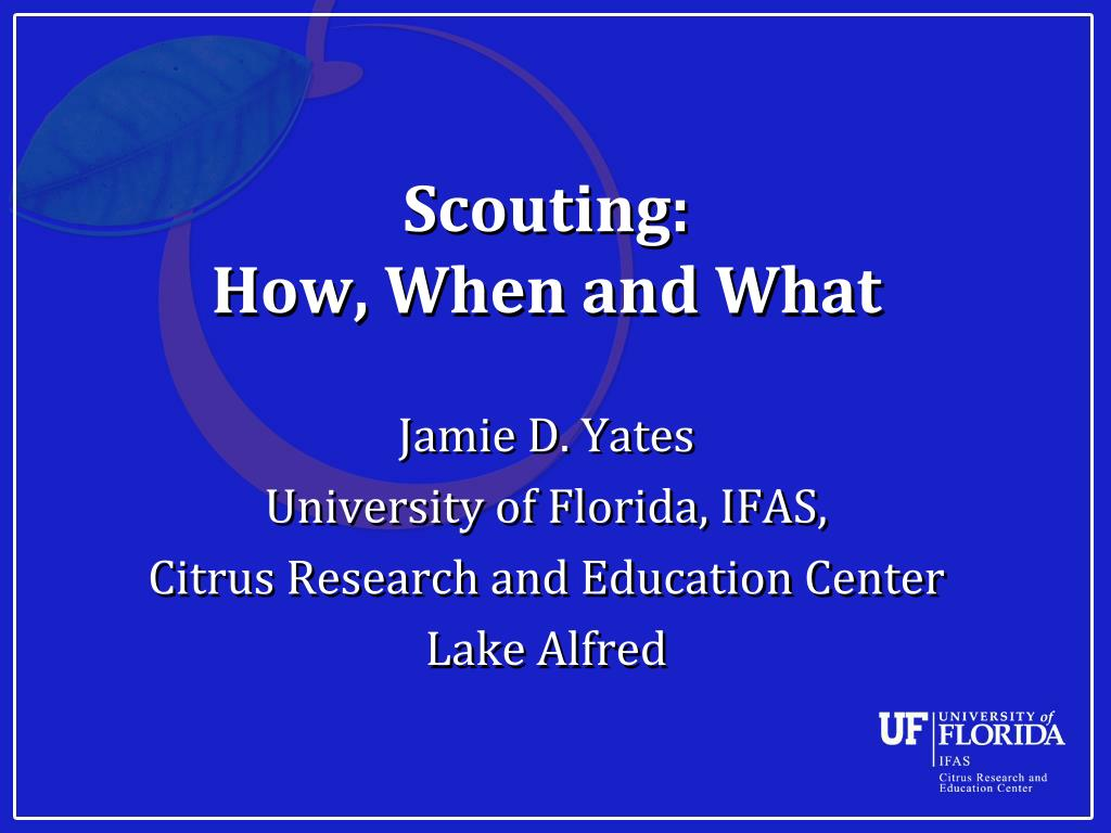 scouting how when and what l.