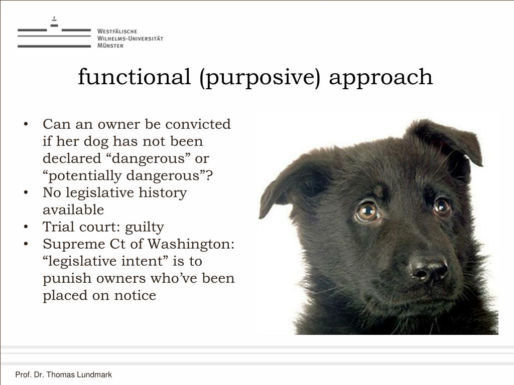 functional (purposive) approach
