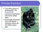 primate evolution44