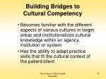 building bridges to cultural competency73
