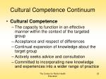 cultural competence continuum23