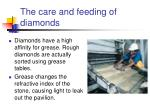 the care and feeding of diamonds