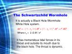 the schwartzchild wormhole