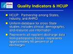 quality indicators hcup