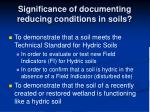 significance of documenting reducing conditions in soils