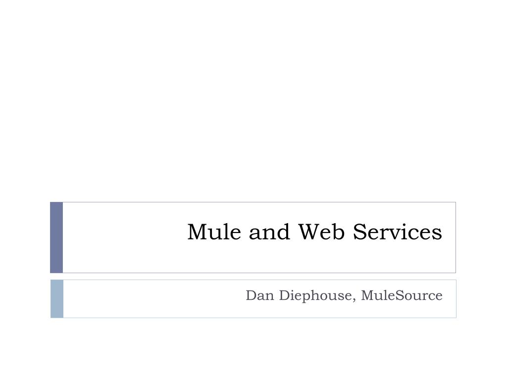 mule and web services l.