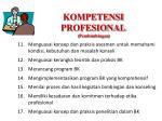 kompetensi profesional pembimbingan
