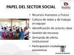 papel del sector social