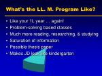 what s the ll m program like