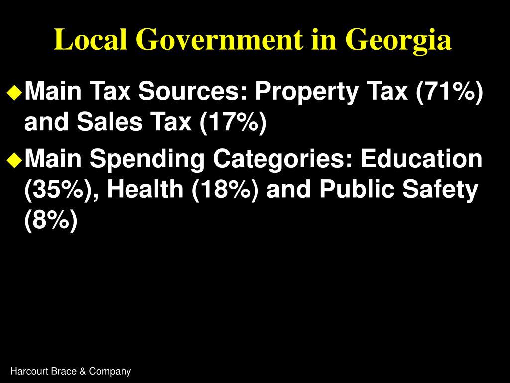 Local Government in Georgia