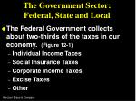 the government sector federal state and local