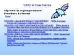 tarp at your service